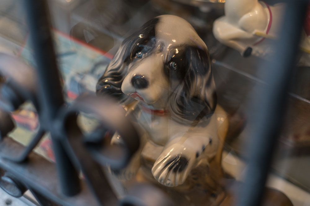 porslinshund skyltfönster galler